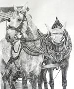 2 Horses of Rothenberg