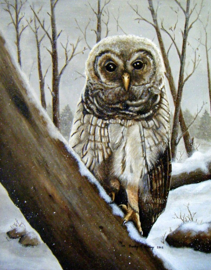 Becky P. Kelley Owl in Acrylic