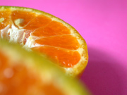 Fruit & Vegetable
