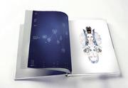 manita amanita / annual report design