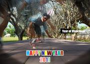 HNY2011 - Year of Vivacious