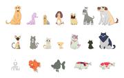 Character Design : Pet News / TVC  30Sec.