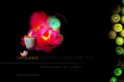 "TRISARA RESORT: ""Symphony of Light"""