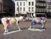 vaches 004
