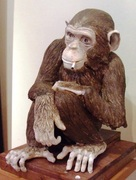 le singe fumeur