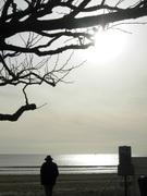 La mer, l'hiver...