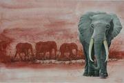 1035.ELEPHANT