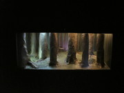Daniel Daniel, installation