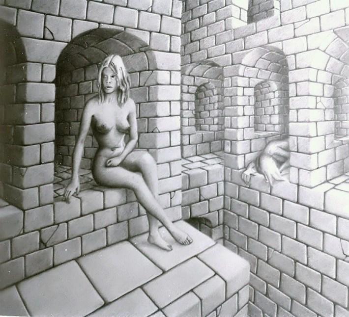 Le reflet imaginaire  (ND)