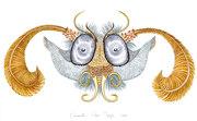 tête de profil de papillon en miroir.     Vue  microscopique.