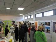 Ma deuxième exposition à Dinan