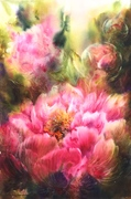 """""""Pivoines roses 3"""". Corinne Izquierdo"""