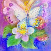 Fleurs et Papillons frères