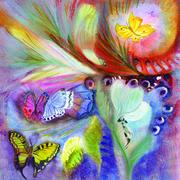 Mariage du papillon la nuit