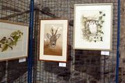 "Salon International d'Art Animalier ""ART ANIMAL "" à Godinne."