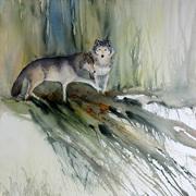 Canis lupus en pleine discussion
