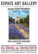 Affiche Gyslaine PACHET MICHENEAU pour réseau