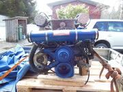 Ford 351 255 hk