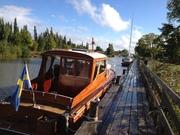 Sjölykka i Göta Kanal