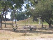 Cacaxtla tumba Palavicini IMG_0297