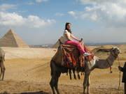 io sul cammello