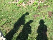 sombras: luis, alba y yop
