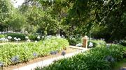 Jardines y Huerta