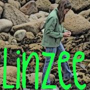 Linzee Doodle Rox