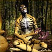 The Tigerman Saga