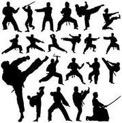 pagan martial artists