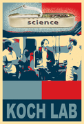 KOCH LAB Science That Sizzles
