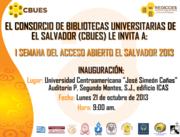Open Access El Salvador, 2013