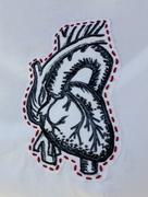Heart close-up