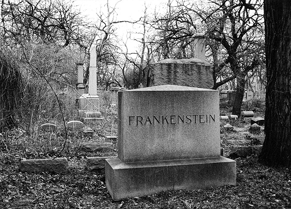 Frankenstein by Angela Geis