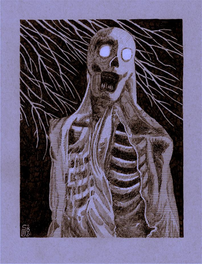 35 Veiled Scream