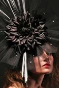 Black Dahlia by Hatsonheads