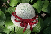 Straw and red petersham ribbon - sunhat