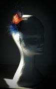 Orange&blueFlatflower2