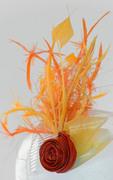 Yellow&Orange_Comb_detail