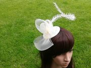 Ivory crin and curled spike