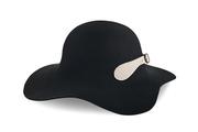 Georgia wide hat
