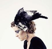 Mind like magpie
