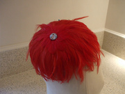 Red feather hat from 2011
