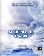 """""""Și aripile au îngeri"""" - autor Oană Ștefan Valentin"""
