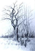 Grafica mea - Mihaela R. Boboc