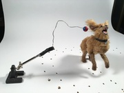 This is a Dog - behind the scenes