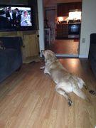 Butler watching The Beverley Hillbillies