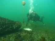 Marine ecotourism in Europe