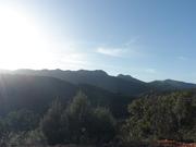 Parque Natural Valle de Alcudia y Sierra Madrona.