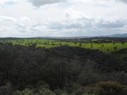 Parque Natural Valle de Alcudia y Sierra Madrona.El Valle de Alcudia